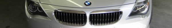 BMW Front Grill and Hood